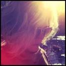 Jess Abbott Williams