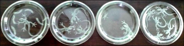 PHouk plates